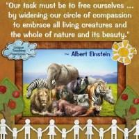 Compassion, Einstein